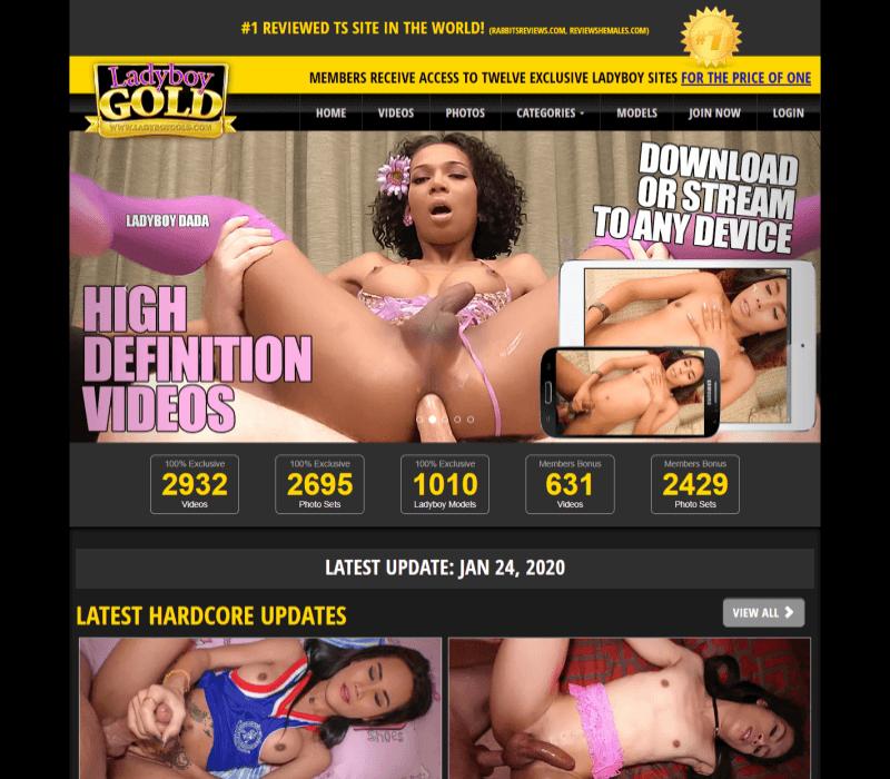 Best transexual porn sites
